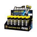 All Stars Amino 9500 18 x 25ml Ampullen